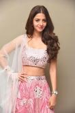 Vedhika at Ruler Movie Success Meet (14)