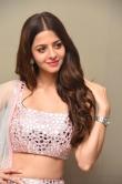 Vedhika at Ruler Movie Success Meet (16)