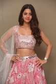 Vedhika at Ruler Movie Success Meet (24)
