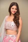 Vedhika at Ruler Movie Success Meet (26)