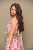 Vedhika at Ruler Movie Success Meet (6)