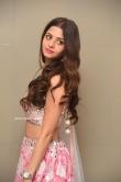 Vedhika at Ruler Movie Success Meet (7)