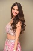 Vedhika at Ruler Movie Success Meet (9)