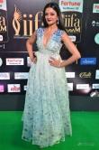 vimala-raman-at-iifa-awards-day-2-696953