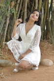 Actress Charlie Chauhan Stills (11)