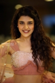 chitra shukla at silly fellows movie pre release (19)