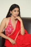 Digangana Suryavanshi in saree dress (2)