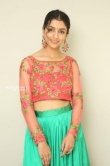 Diksha Sharma Raina new stills (10)