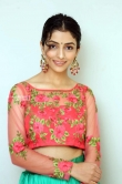 Diksha Sharma Raina new stills (11)
