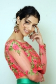 Diksha Sharma Raina new stills (14)