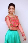 Diksha Sharma Raina new stills (15)