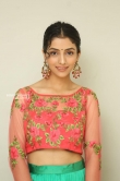 Diksha Sharma Raina new stills (17)