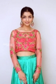 Diksha Sharma Raina new stills (18)