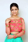 Diksha Sharma Raina new stills (4)