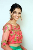 Diksha Sharma Raina new stills (8)