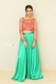 Diksha Sharma Raina new stills (9)