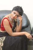 dimple hayathi stills (25)