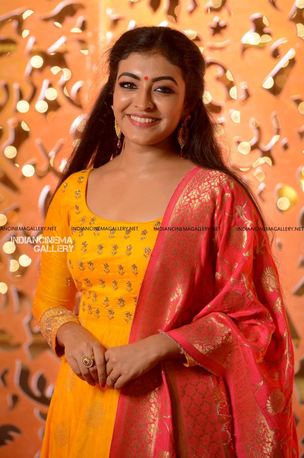 Durga Krishna at sunny wayne marriage reception (4)