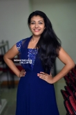 Durga Krishna at aadu 2 success meet (6)