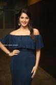 Elsa Ghosh at Krishna Rao Supermarket Movie Pre Release Event (4)