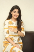 Gargeyi Yellapragada Latest photos (33)