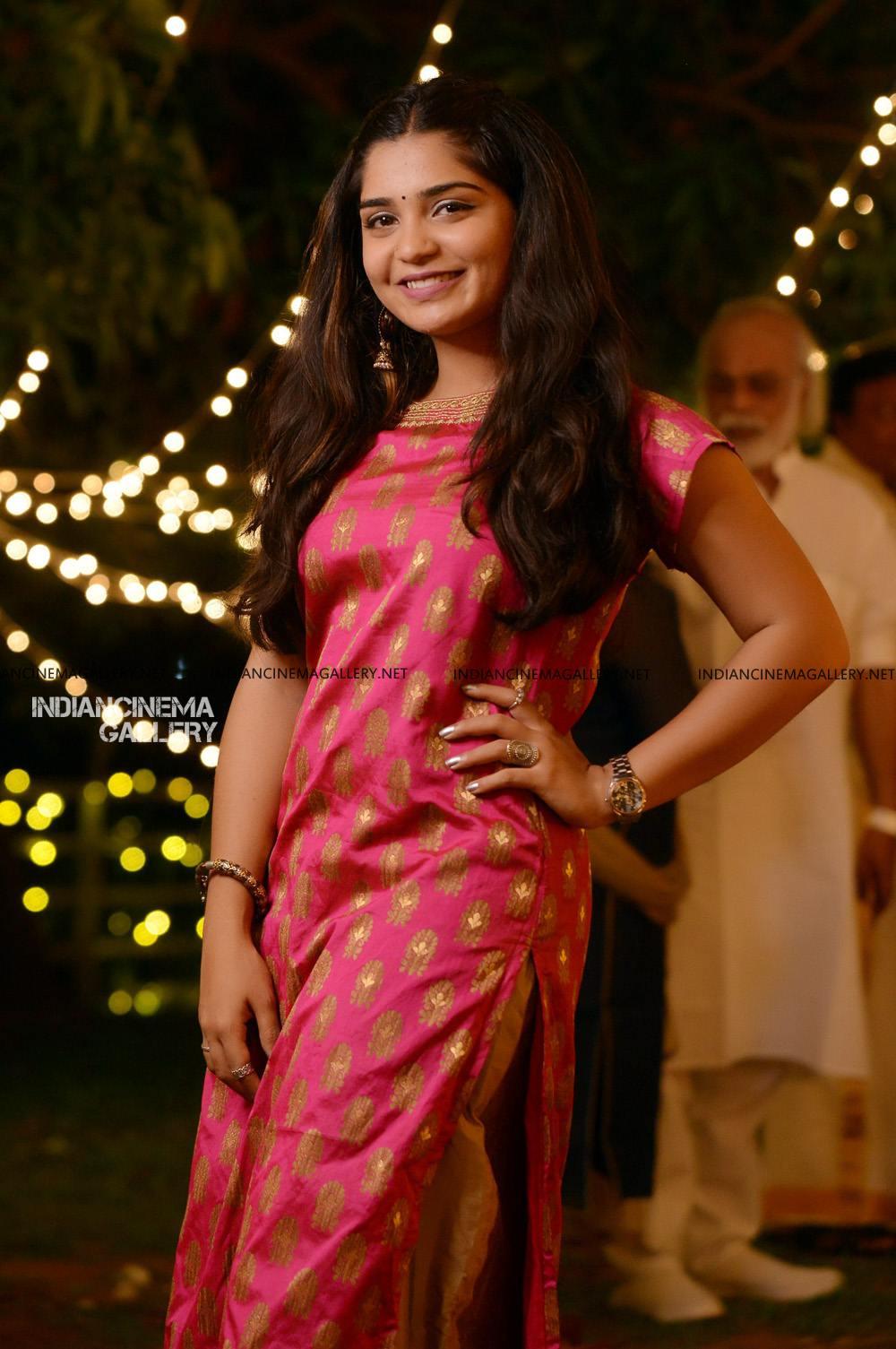 Gouri G Kishan at sunny wayne wedding reception (6)