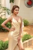 Actress K Nishigandha Stills (2)