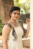 Kalpika Ganesh at Eakam Movie Teaser Launch (4)