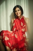 Kalyani Priyadarshan Latest photoshoot (16)