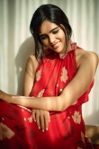 Kalyani Priyadarshan Latest photoshoot (19)