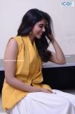 Kalyani Priyadarshan in yellow dress august 2019 (24)