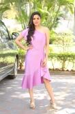 Kriti Garg in pink dress (4)