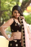 Madhubala telugu actress stills (25)