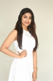 Malavika Satheesan at Choosi Choodangaane Press Meet (13)