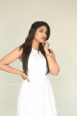 Malavika Satheesan at Choosi Choodangaane Press Meet (14)