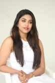 Malavika Satheesan at Choosi Choodangaane Press Meet (17)