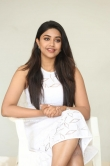 Malavika Satheesan at Choosi Choodangaane Press Meet (19)
