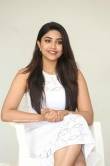 Malavika Satheesan at Choosi Choodangaane Press Meet (20)
