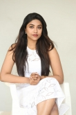 Malavika Satheesan at Choosi Choodangaane Press Meet (21)