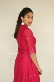 Malavika Satheesan at Choosi Chudangane Movie Success Meet (24)