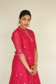 Malavika Satheesan at Choosi Chudangane Movie Success Meet (6)