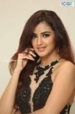 Malavika Sharma at raja varu rani varu song launch (14)
