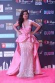 Malvika Sharma at SIIMA awards 2018 (4)