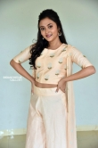 Megha Chowdhury at Marshal Movie Teaser Launch (5)