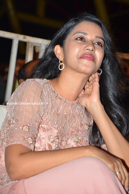 Mirnalini Ravi at Gaddala Konda Ganesh Success Meet (9)