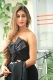 Myra Sareen at officer movie press meet (25)