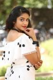 Nakshatra at palasa movie first look launch (19)