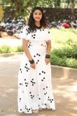 Nakshatra at palasa movie first look launch (5)
