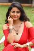 Nandini telugu actress stills (27)