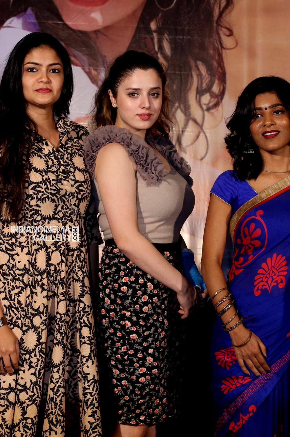 Nesa Farhadi at Sita on the Road Trailer Launch (4)
